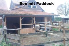 box_mit_paddock2
